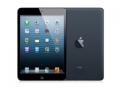 AppleiPad mini Wi-Fiモデル 16GB ブラック&スレート MD528J/A
