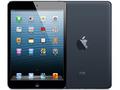 AppleiPad mini Wi-Fiモデル 32GB ブラック&スレート(海外版)