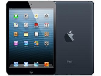 AppleSoftBank iPad mini Cellular 64GB ブラック&スレート MD542J/A