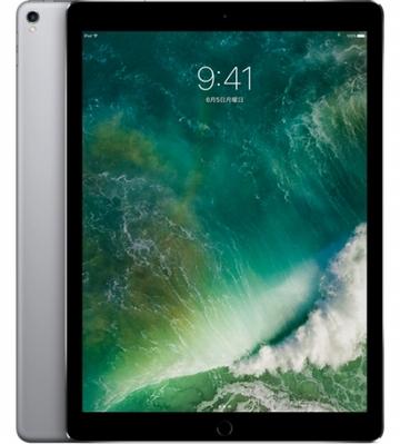 au iPad Pro 12.9インチ(第2世代) Cellular 256GB スペースグレイ MPA42J/A