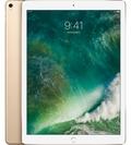Appledocomo iPad Pro 12.9インチ(第2世代) Cellular 256GB ゴールド MPA62J/A